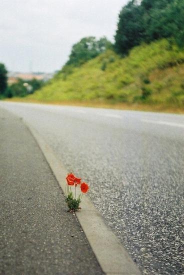 Ocieplony wizerunek asfaltu