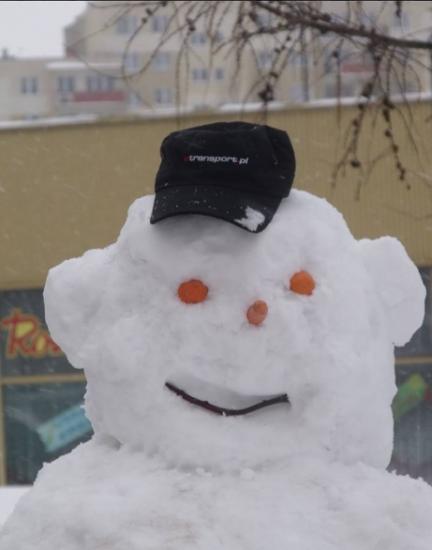 Pozdrawiamy zimowo