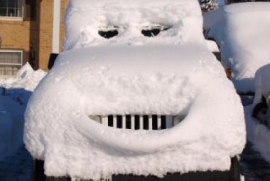Niektórych śnieg cieszy i śmieszy ❄❄❄