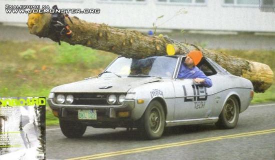 Transport drzewny