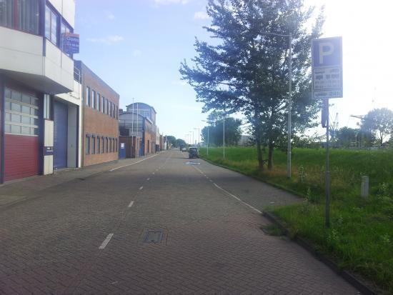 Rotterdam, dzikus, blisko centrum.